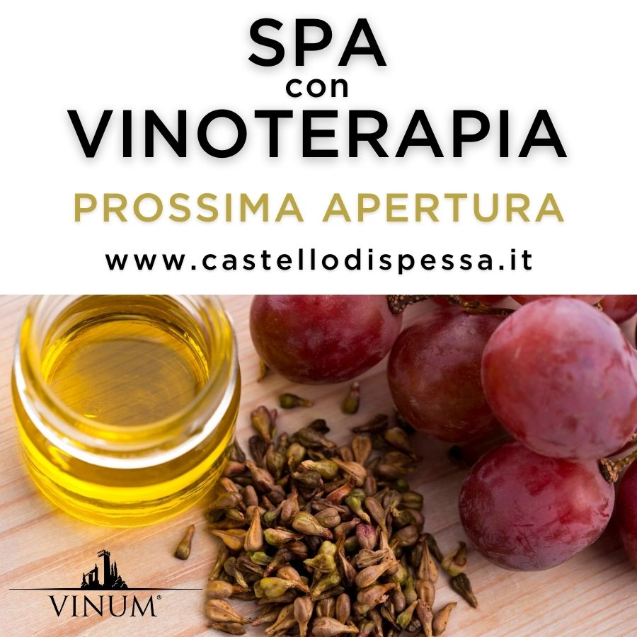 Vinum è la futura area benessere del Resort, dedicata alla vinoterapia. I richiami all'uva, al vino e a tutti i derivati della vite prodotti dal Castello di Spessa ne sono i protagonisti.